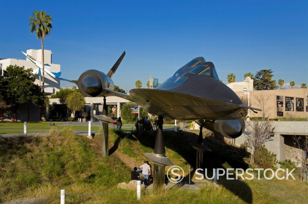 A_12 Blackbird in Exposition Park, Los Angeles, California, United States of America, North America : Stock Photo