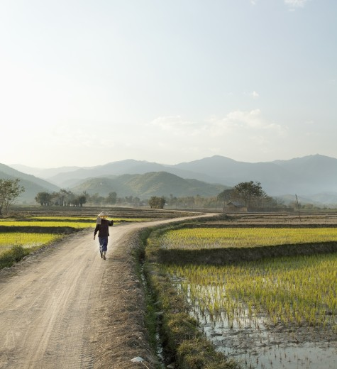 Myanmar, Farmer walking on dirt road : Stock Photo