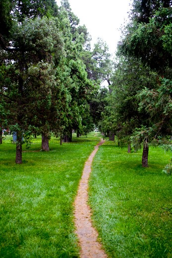 Trail passing through a park, Beijing, China : Stock Photo