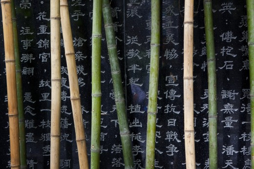 Close-up of bamboos with Chinese script, China : Stock Photo