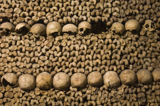 Human skulls in the catacomb, Paris, France : Stock Photo