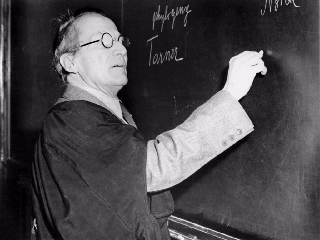 Erwin Schrodinger, Austrian physicist, lecturing at the blackboard, c 1950. : Stock Photo
