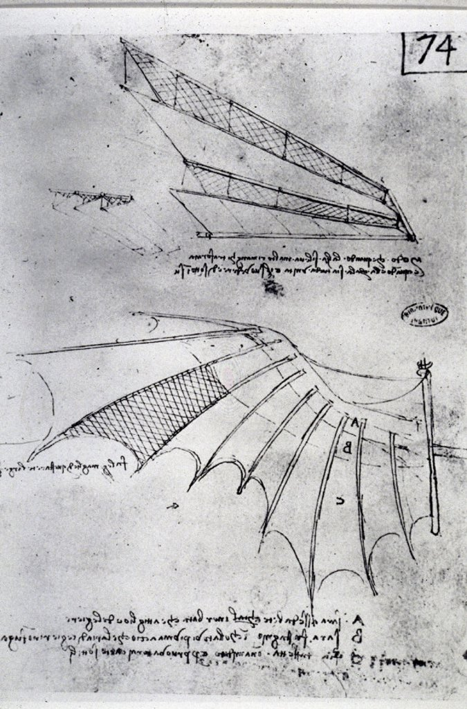 the creative, calculative, coherent leonardo da vinci essay Welcome to the september 2016 edition of the nhbs monthly catalogue  from leonardo da vinci on the shifting  between the calculative and speculative.