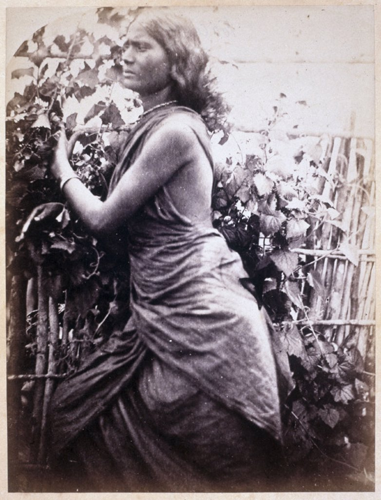 Young Ceylonese woman plantation worker, c 1875-1878. : Stock Photo