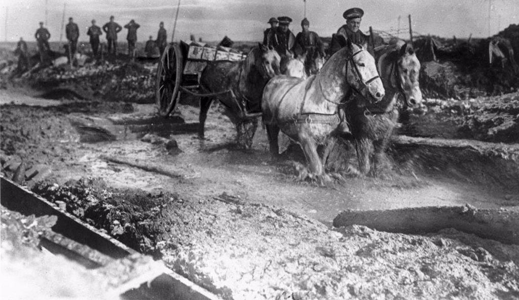 Horse drawn ammunition cart, 1916. : Stock Photo