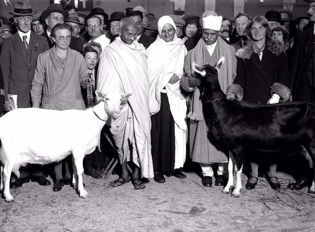 Mahatma Gandhi at a dairy show, Agricultural Hall, 24 October 1931 : Stock Photo