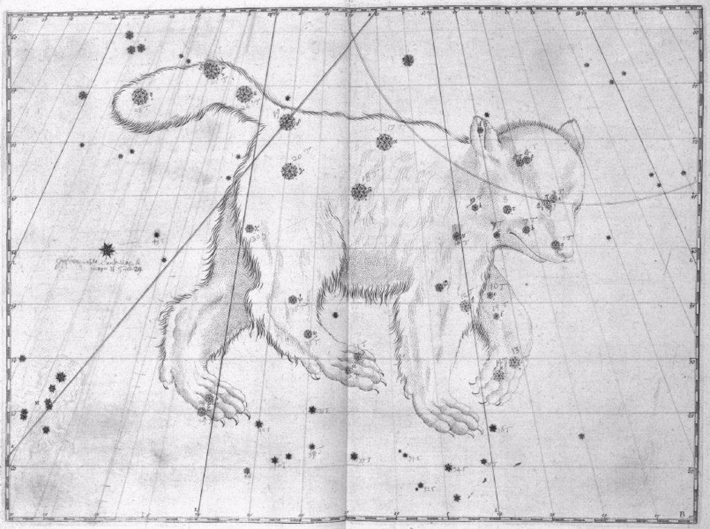 The constellation Ursa Major, 1603. : Stock Photo