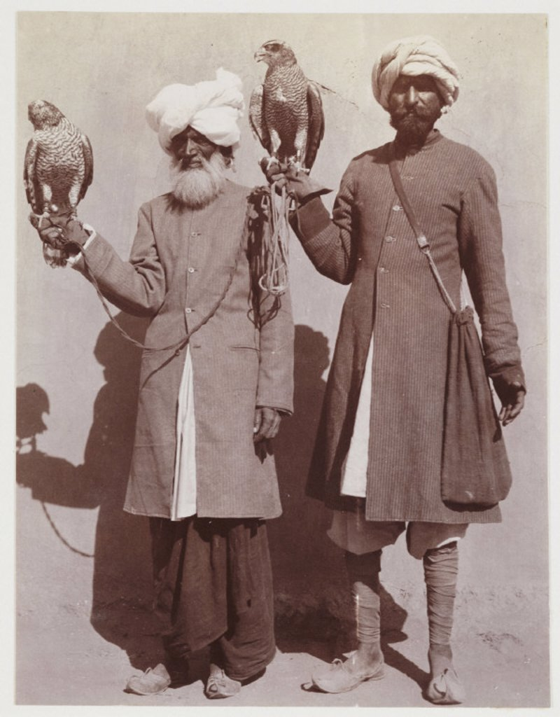 Indian falconers, c 1912. : Stock Photo