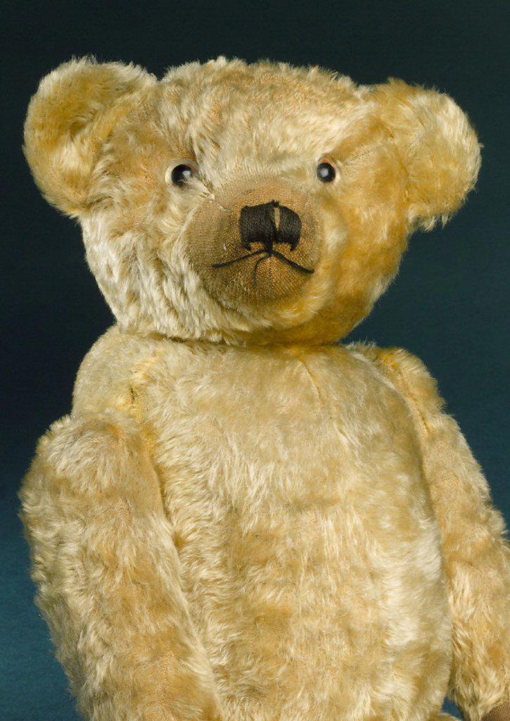 Teddy bear with golden mohair, 1920s. : Stock Photo
