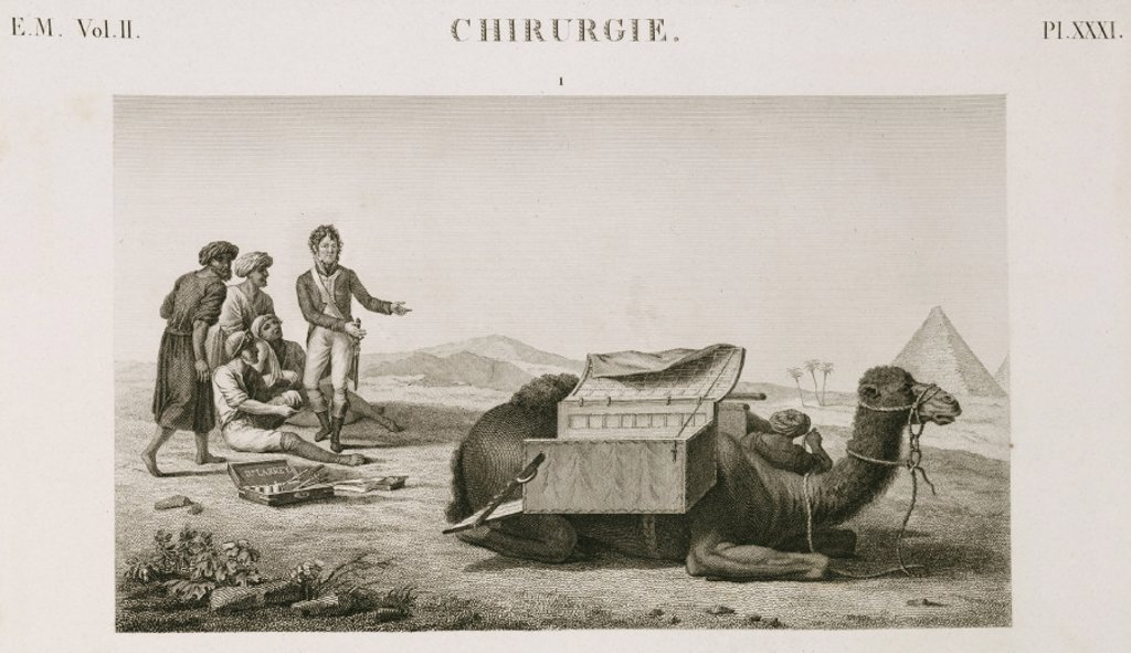 Dr Larrey's camel ambulance, Egypt, c 1798. : Stock Photo
