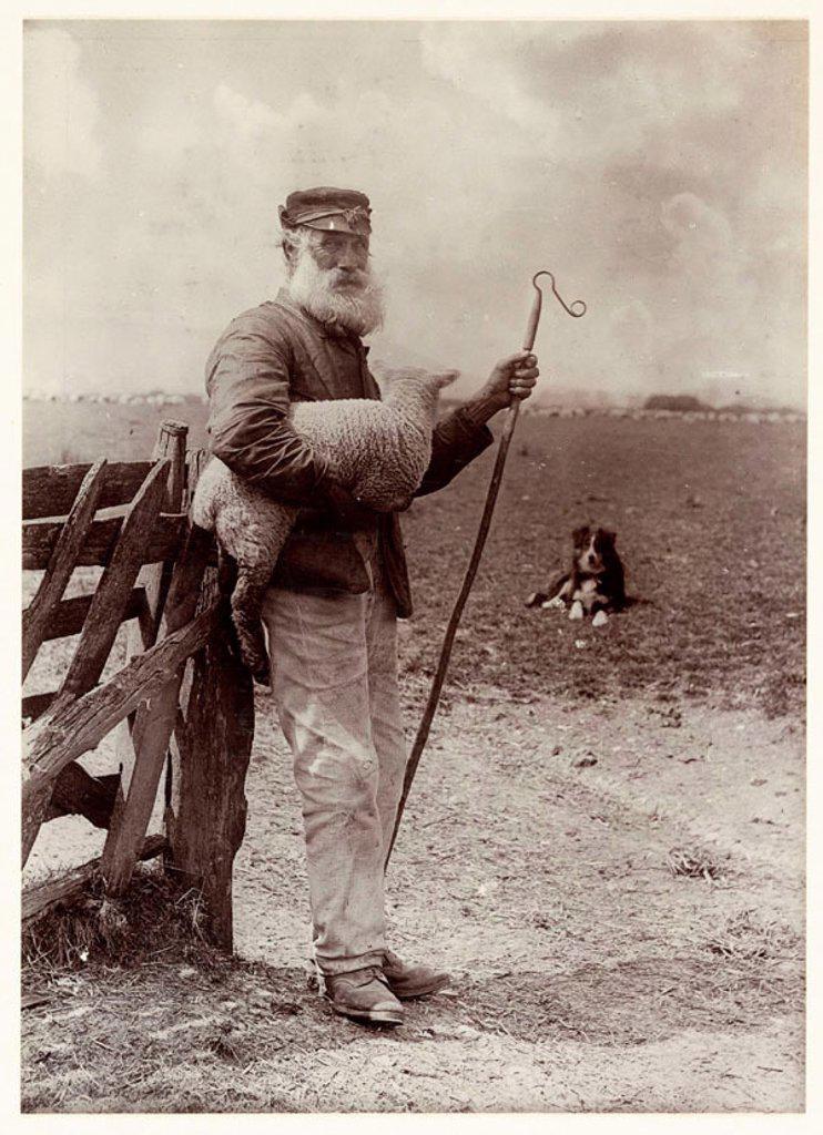 Stock Photo: 1895-40092 'Ninety and Nine', 1890.