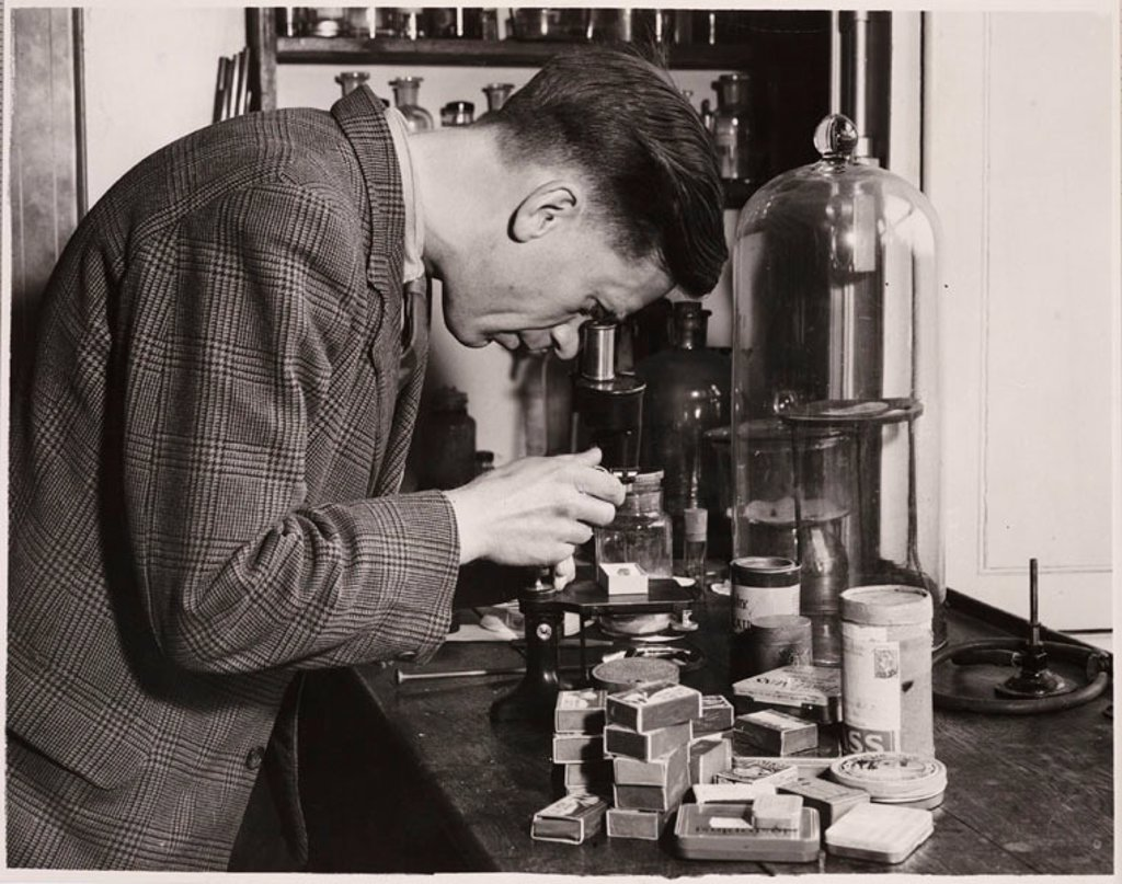 A pathologist checking specimens, 28 May 1948. : Stock Photo