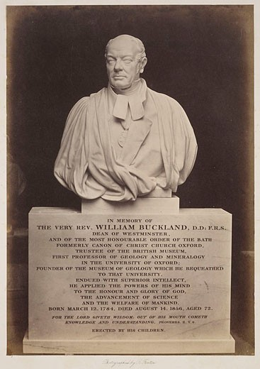 Bust of William Buckland, 1856-1858 : Stock Photo