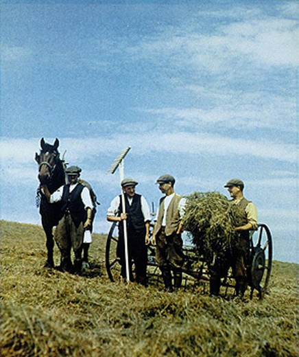 Stock Photo: 1895-45431 Farm workers with horse and agricultural machinery