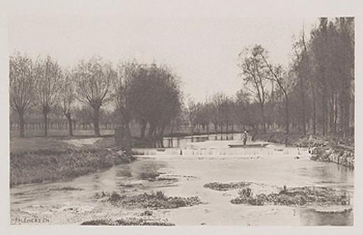 The Shoot, Amwell Magna Fishery, 1888 : Stock Photo