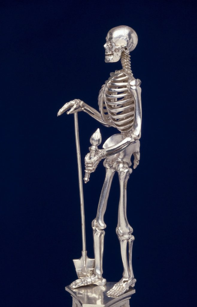 Silver-plated skeleton. : Stock Photo