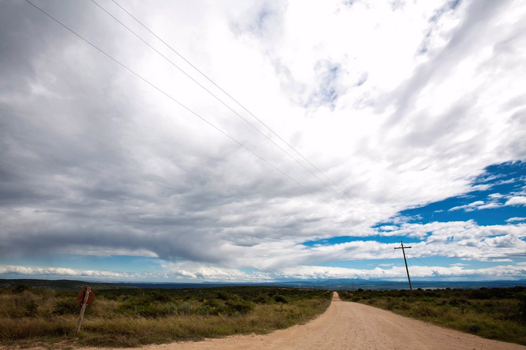 Landscape with dusty road and cloud formation, Addo Elephant National Park, Eastern Cape, South Africa : Stock Photo