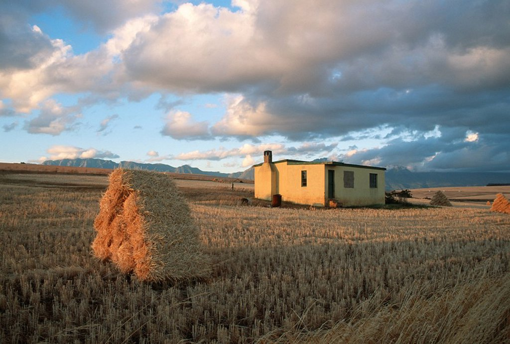 Stock Photo: 1896R-2562 Scenic View of a Farm House with Bales of Hay in the Foreground  Caledon, Overberg, Western Cape Province, South Africa