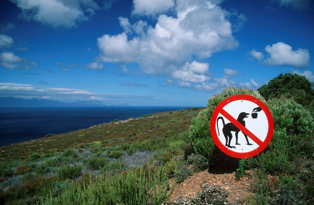 Stock Photo: 1896R-2620 Scenic View of a Mountain and the Ocean with a Do Not Feed the Baboons Sign in the Foreground  Cape Peninsula, Cape Town, Western Cape Province, South Africa