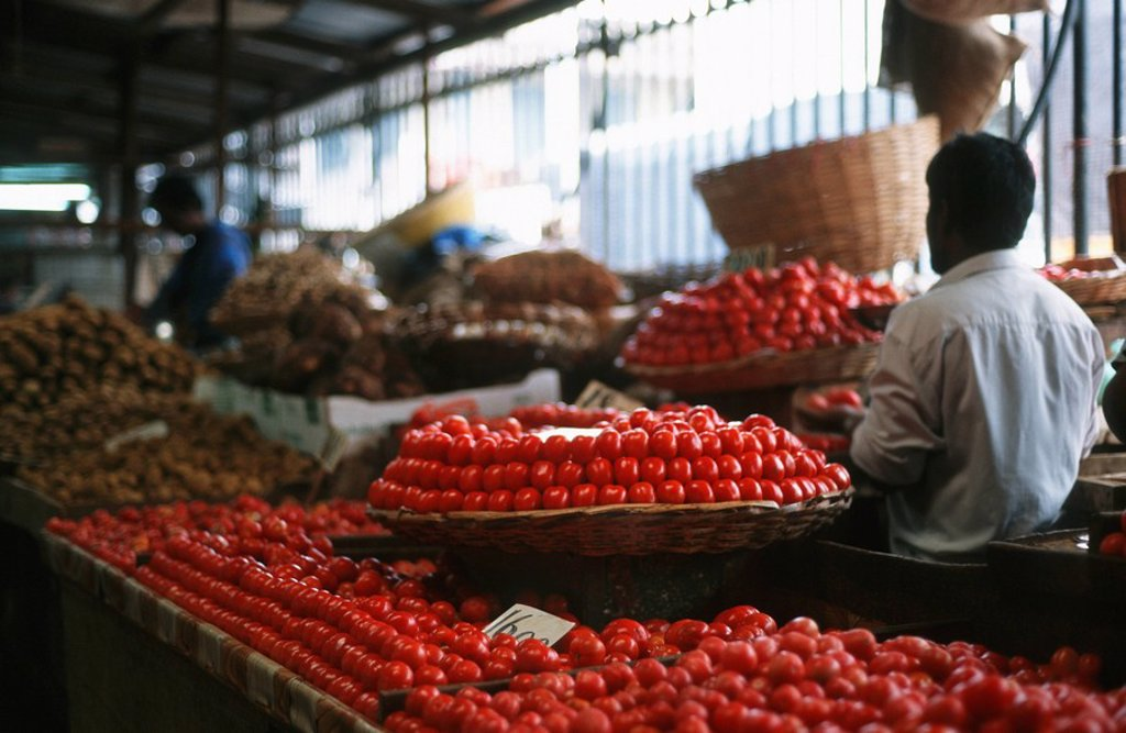 Tomatoes on Display at a Fresh Produce Market  Maputo, Mozambique : Stock Photo