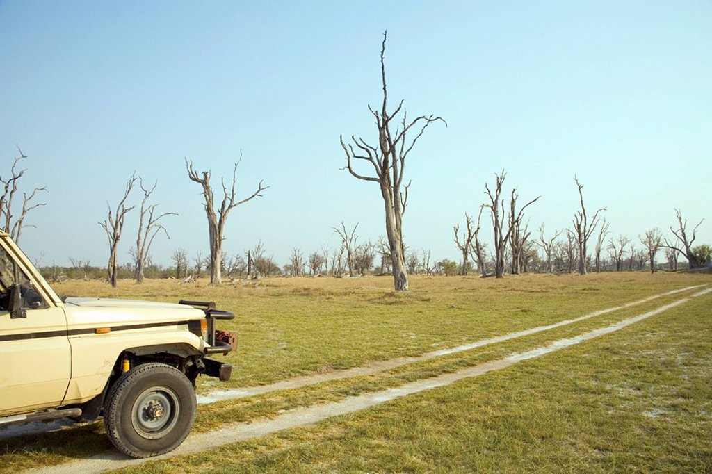 Side view of a 4x4 vehicle on safari with Dead Tree Island in the background, Okavango Delta, Botswana : Stock Photo