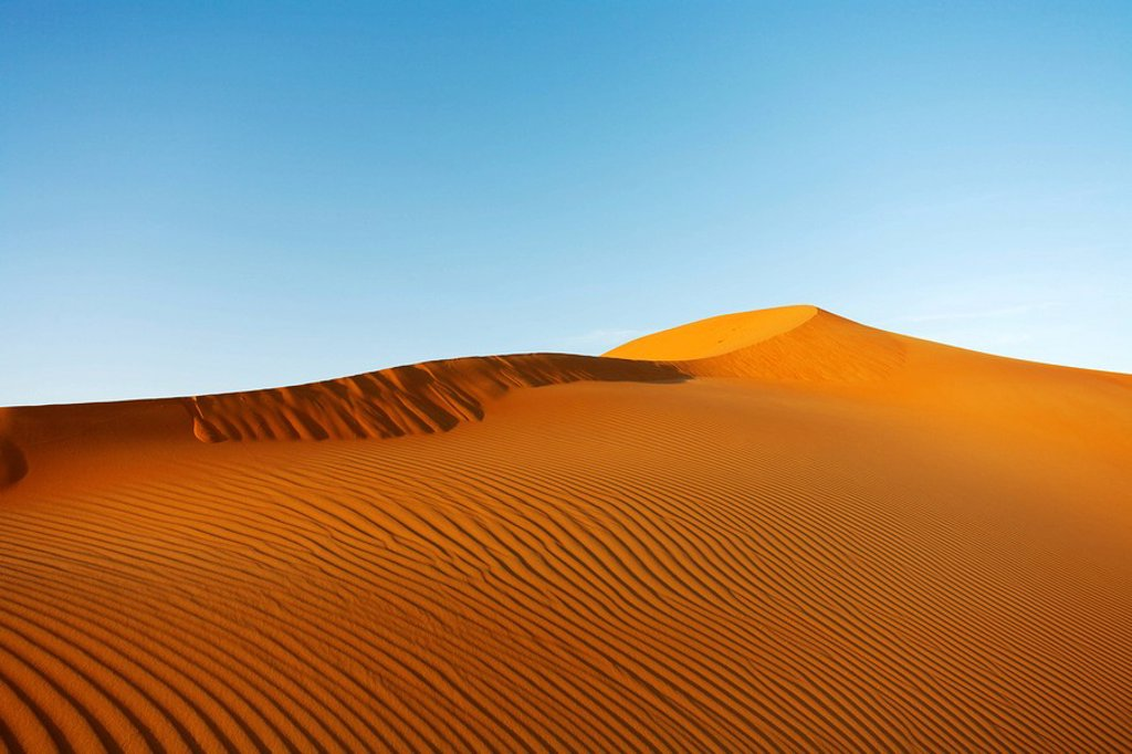 Desert sand dunes in Abu Dhabi. United Arab Emirates : Stock Photo