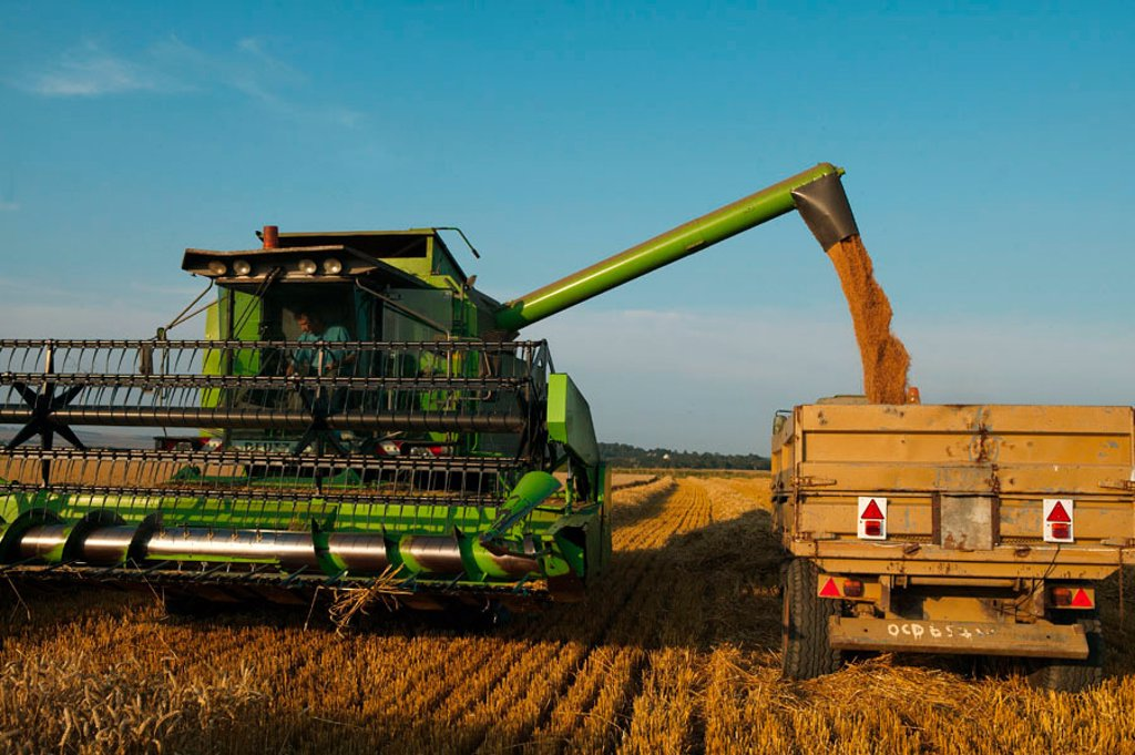 Harvesting in West Sussex : Stock Photo