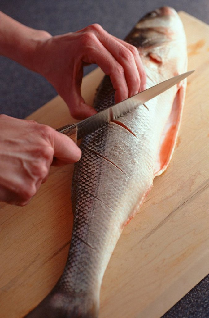 Scoring Sea Bass : Stock Photo