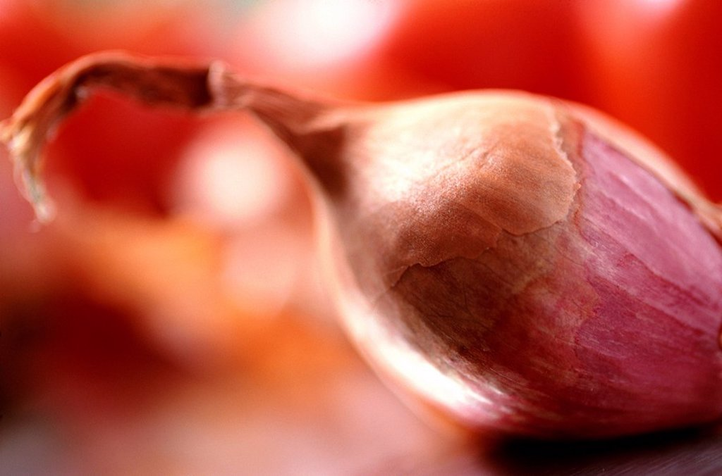 Stock Photo: 1898-22443 Shallot