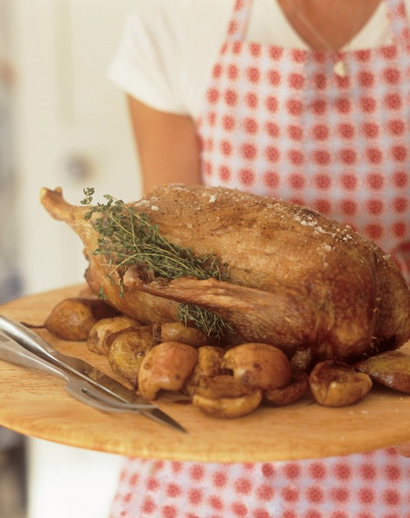 Woman holding roast duck with apple and herbs on wooden tray. : Stock Photo