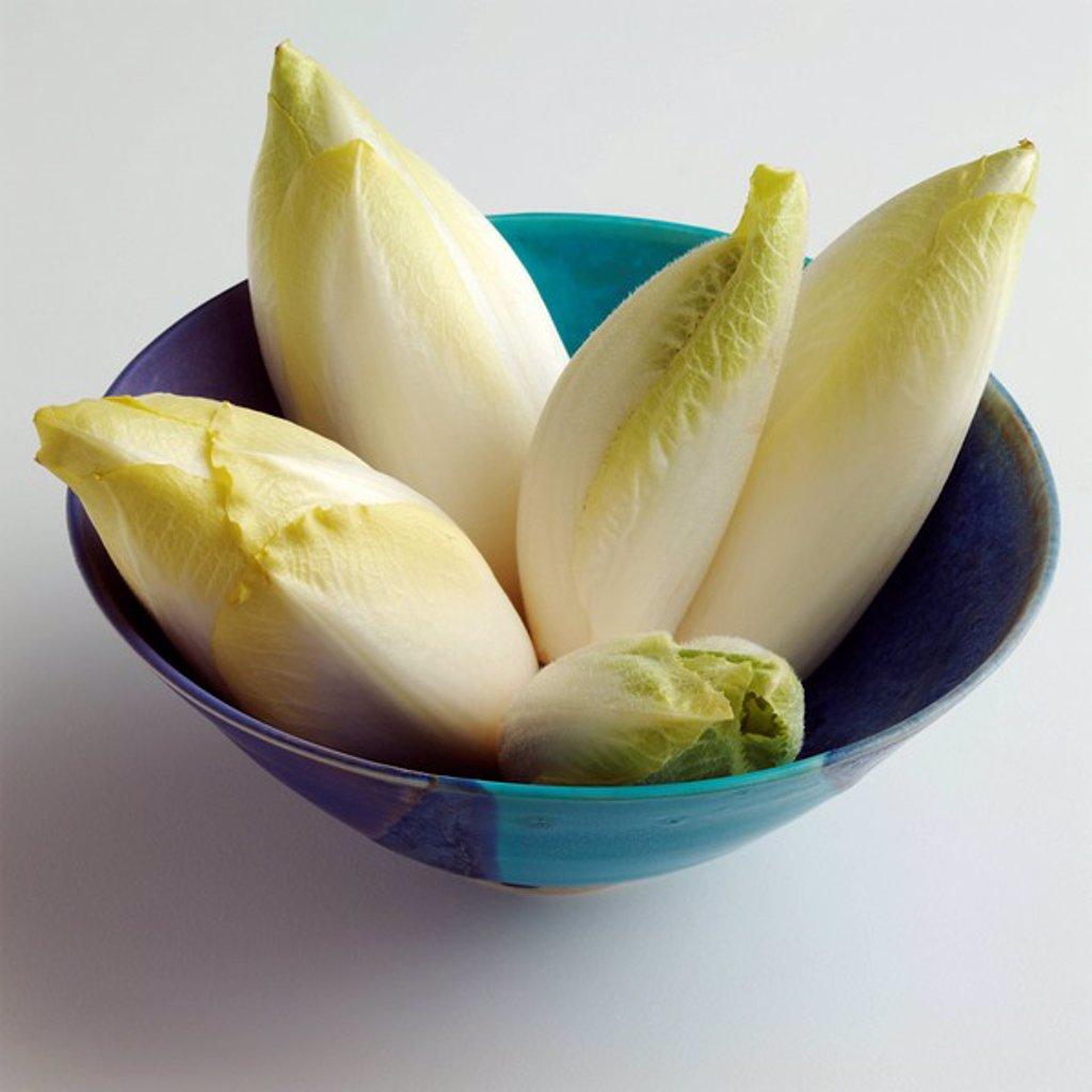 Stock Photo: 1898-33934 Chicory