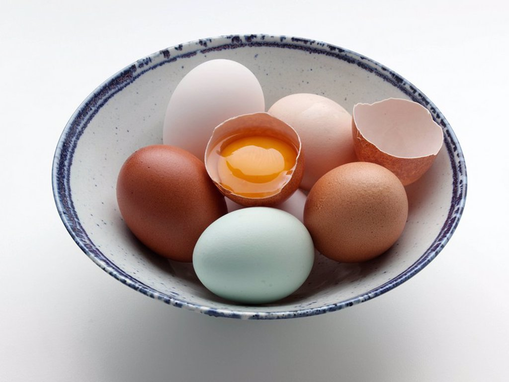 Stock Photo: 1898-37641 Free range duck old cotswold legbar and Burford Brown hens eggs