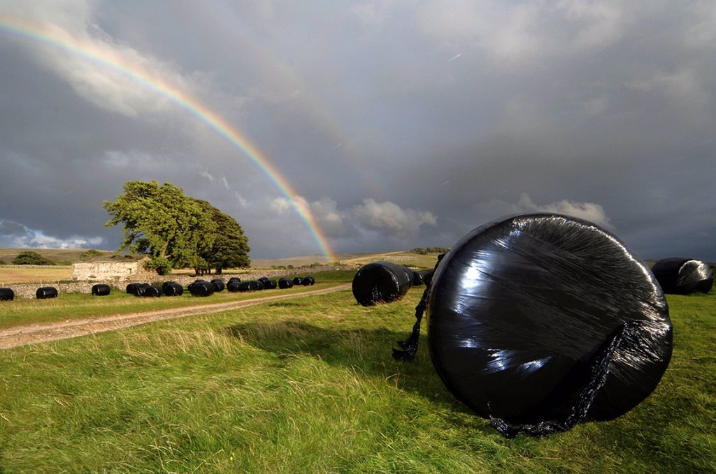 Big bales of silage under a rainbow , Cumbria : Stock Photo