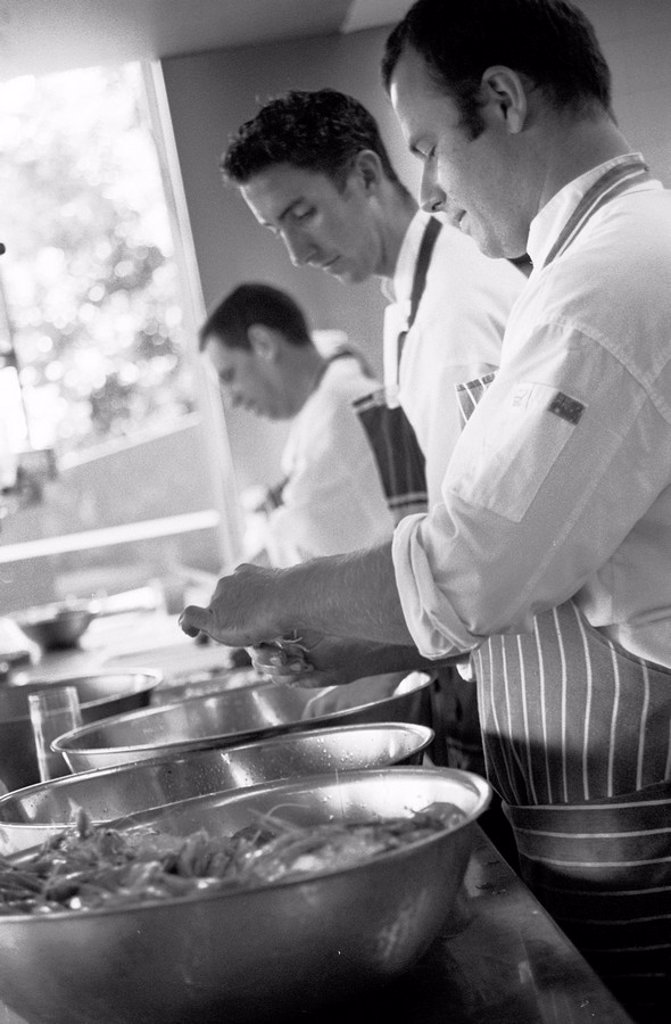 Chefs in Kitchen, Black and White : Stock Photo