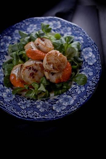 Seared scallops on a blue and white china plate : Stock Photo