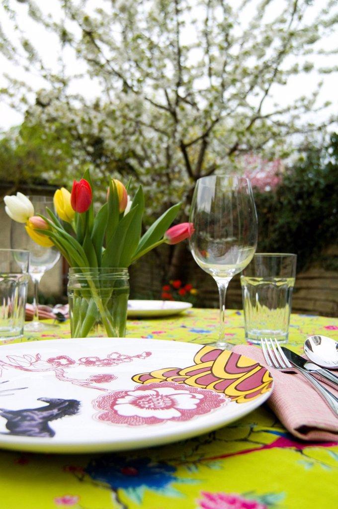 Garden Table setting _ springtime : Stock Photo