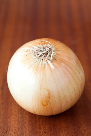 Single Onion : Stock Photo