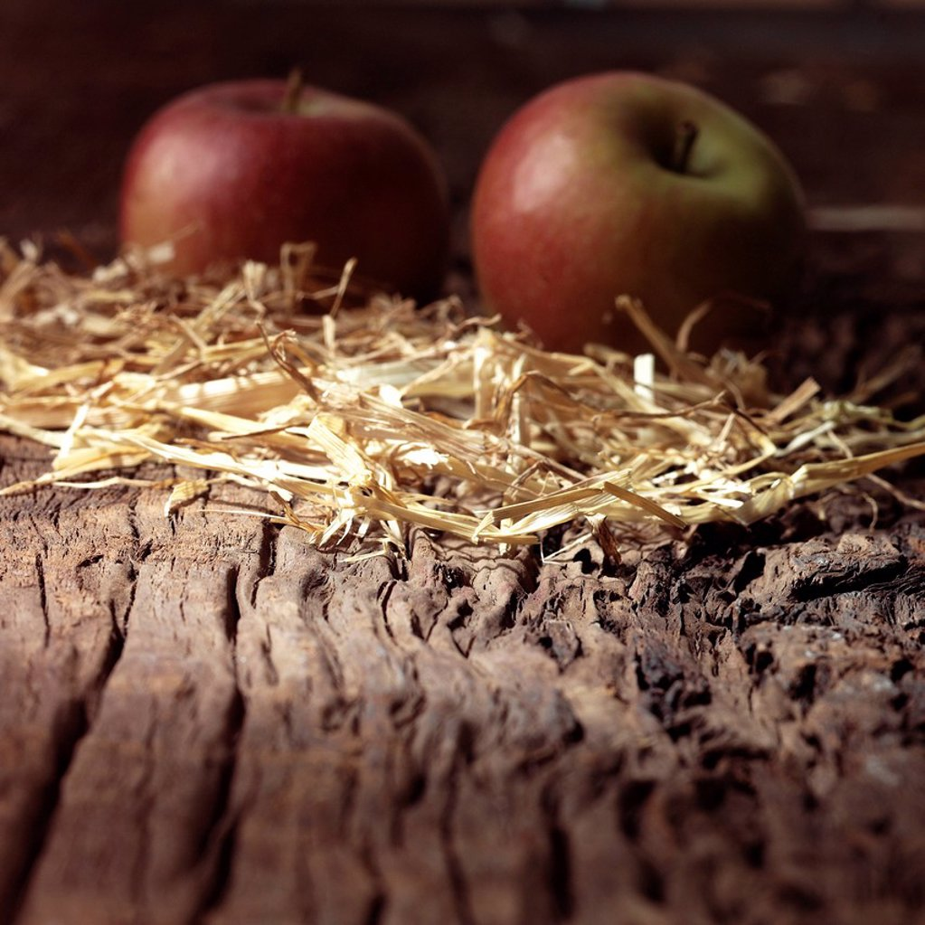 Two Cox Apples on rustic background : Stock Photo