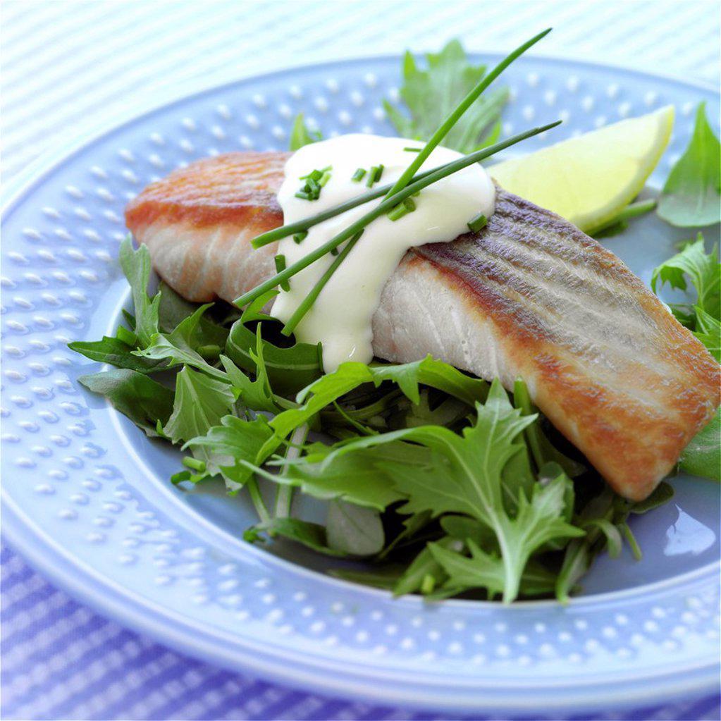 Stock Photo: 1898-46886 Salmon fillet with Hollandaise sauce & rocket salad