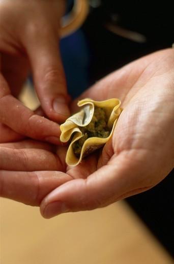 making wontons : Stock Photo
