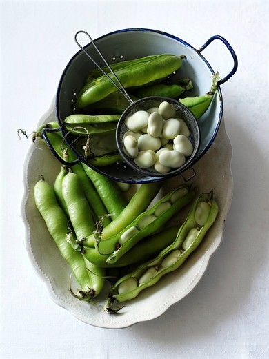 Broad Beans : Stock Photo