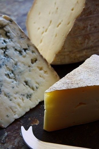 A selection of french cheeses, Berger Bleu, Bethmale Ariegeois, and La Barousse : Stock Photo