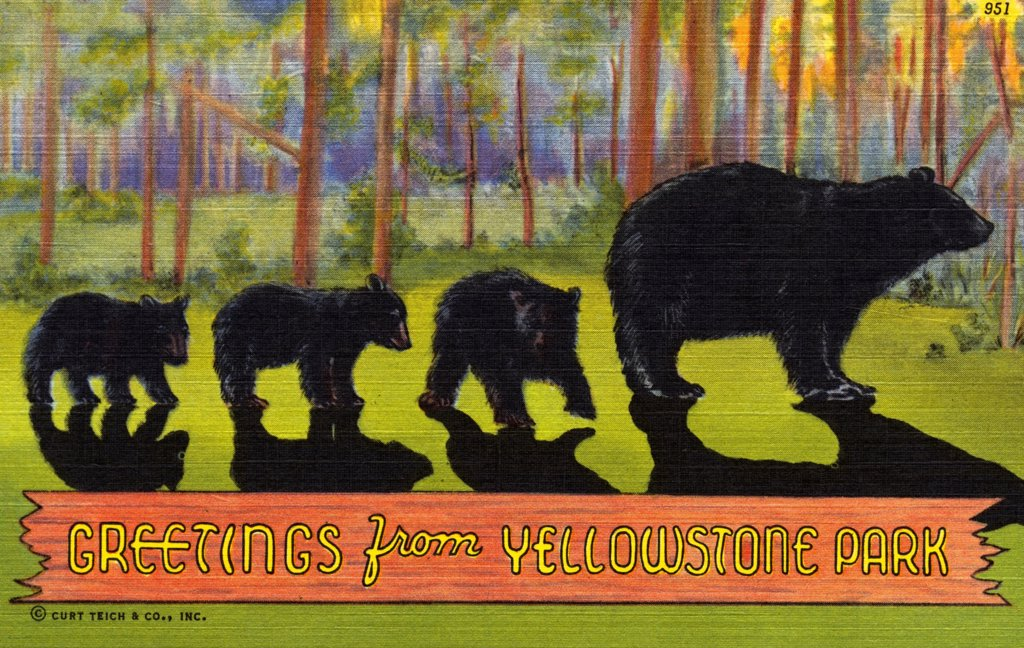 Stock Photo: 1899-10917 Greetings from Yellowstone Park Postcard. ca. 1939, Greetings from Yellowstone Park Postcard