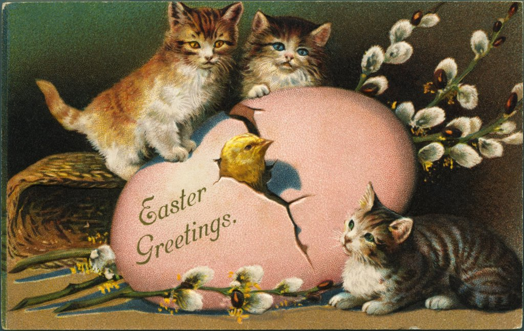 Chick and Cats in Easter Greeting. ca. 1899-1915, Easter Greeting  : Stock Photo