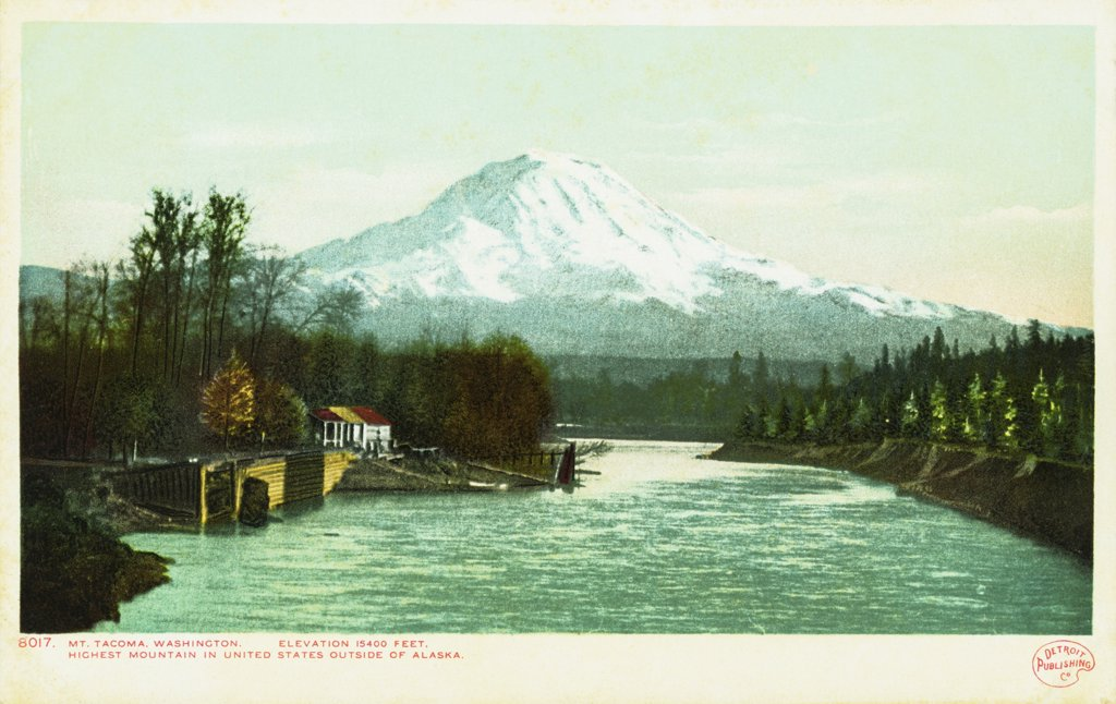 Mt. Tacoma, Washington Postcard. ca. 1905-1930, Mt. Tacoma, Washington Postcard  : Stock Photo
