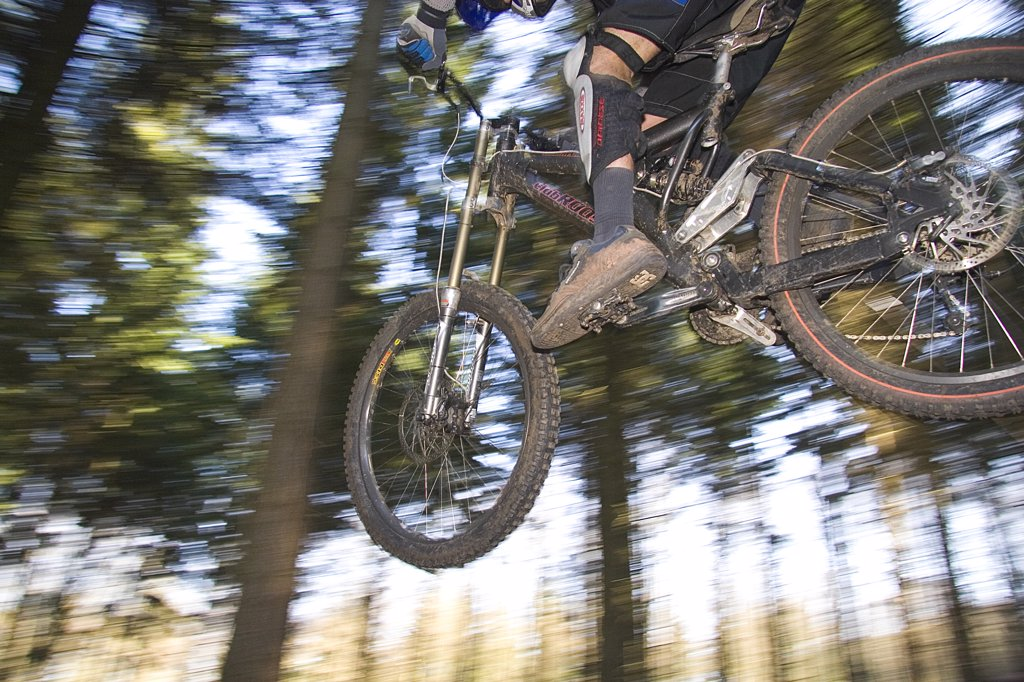 Stock Photo: 1899-13490 A mountain biker jumping over a bump, in a forest, Rogate, UK 2005.