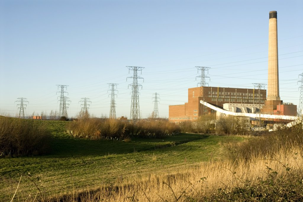 Carbon offset project next to Uskmouth Power Station. .  : Stock Photo