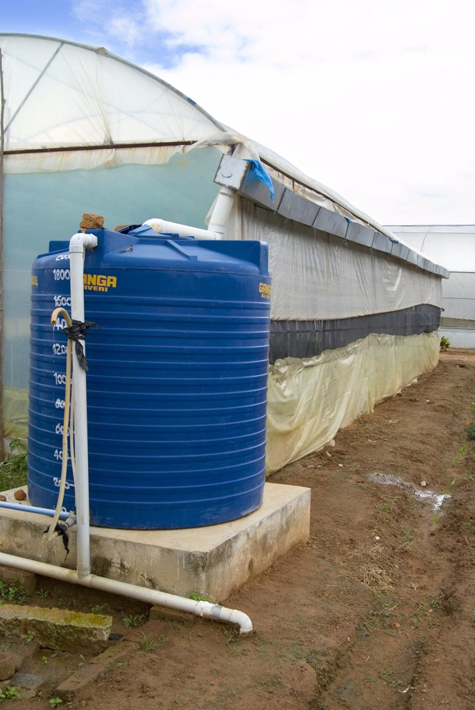Stock Photo: 1899-21465 Rooftop rainwater harvesting system for water security in greenhouse - University of Agricultural Sciences, Vidyaranyapura, Bangalore, Karnataka, India.