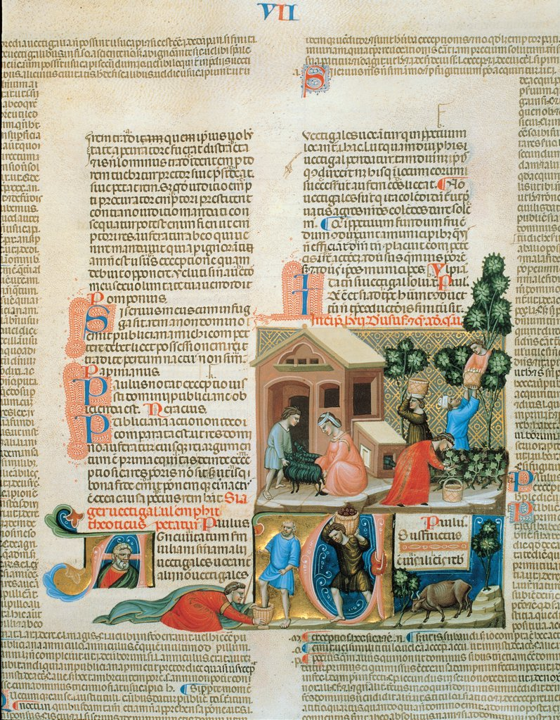Farm Works, by Bolognese illuminator, 1340, 14th Century, illuminated manuscript. Italy, Piemonte, Turin, National University Library. Detail. Illuminated page text incipit: beginning initial letter squares illustration: picture small figures farmers notices barn sheep fruit picking trees basket red blue black green gold. : Stock Photo