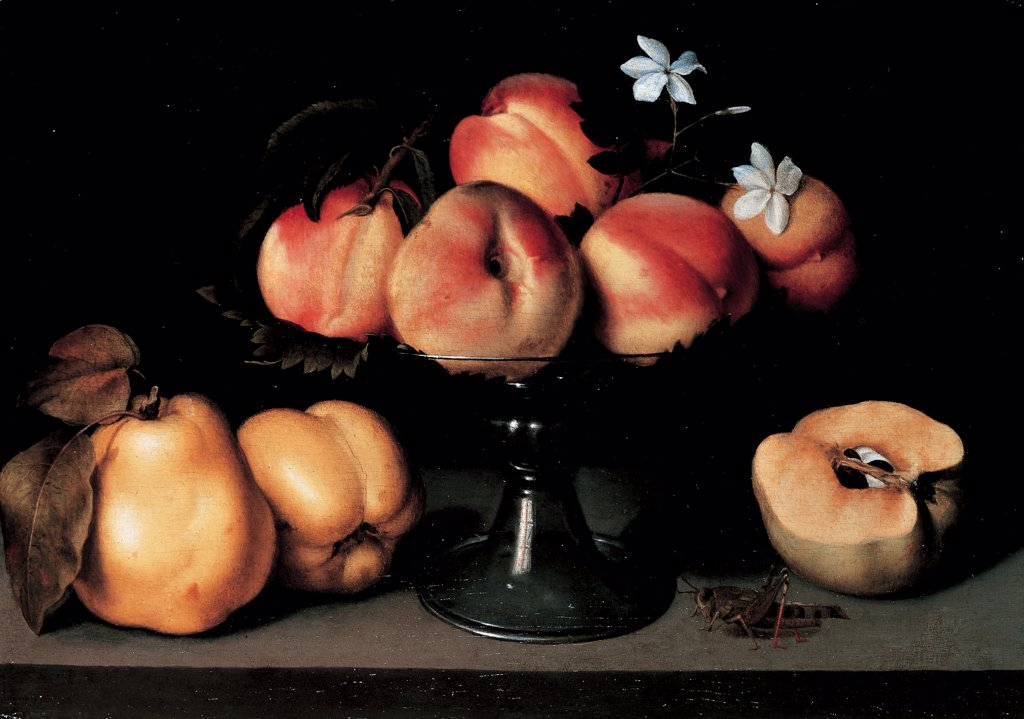 Stock Photo: 1899-30630 Crystal Fruit stand with Peaches, Quinces, Jasmine Flowers and a Grasshopper, by Galizia Fede, 1607, 17th Century, oil on panel. Private collection. Whole artwork. On a table, center of crystal fruit stand/epergne with peaches, vine leaves and white flowers. left of two quinces with leaf-stalks and leaves. right of half an apple nearly gone bad and a grasshopper as symbols of devastation/destruction and death